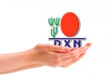 компания DXN